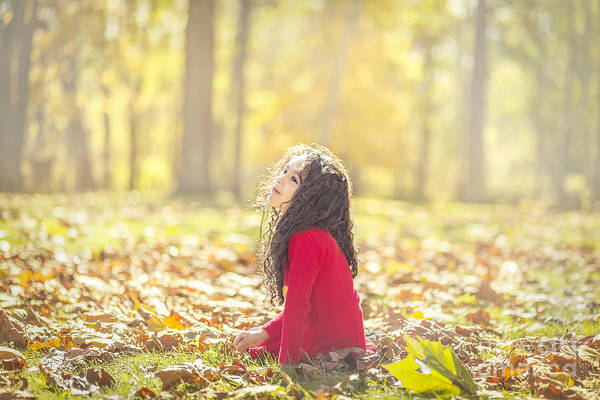 Sunny Wall Art - Photograph - The Magic Of Autumn by Evelina Kremsdorf