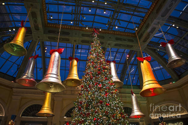 Conservatory Photograph - The Magical Holiday Seasonal Display At The Bellagio Conservator by Jamie Pham