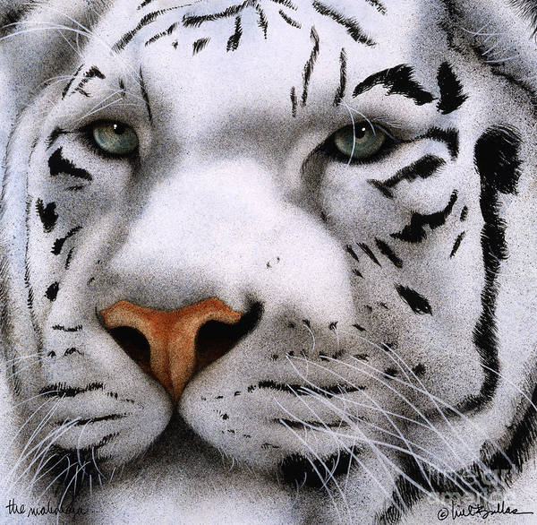 Big Cat Wall Art - Painting - The Maharajah... by Will Bullas