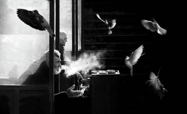 Istanbul Photograph - The Man Of Pigeons by Juan Luis Duran
