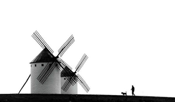 Windmills Photograph - The Man, The Dog And The Windmills by J. Antonio Pardo