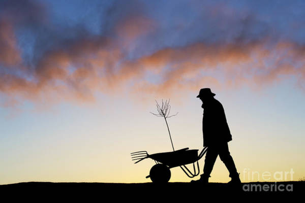 Garden Photograph - The Man Who Plants Trees by Tim Gainey