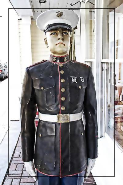 Photograph - The Marine by Alice Gipson