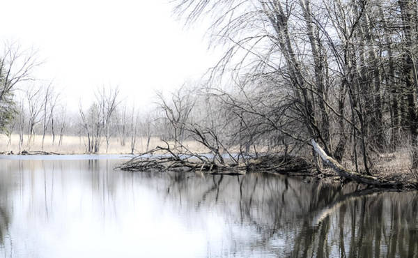 Photograph - The Marsh by Julie Palencia