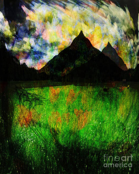 Photograph - The Meadow by Edmund Nagele