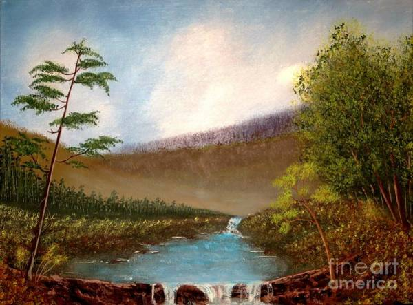 Meadowlands Painting - The Meadows by Tim Townsend