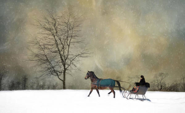 Photograph - The Merry Trotter by Robin-Lee Vieira