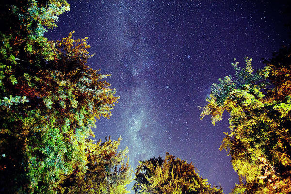 Southern Hemisphere Wall Art - Photograph - The Milky Way by Shaun