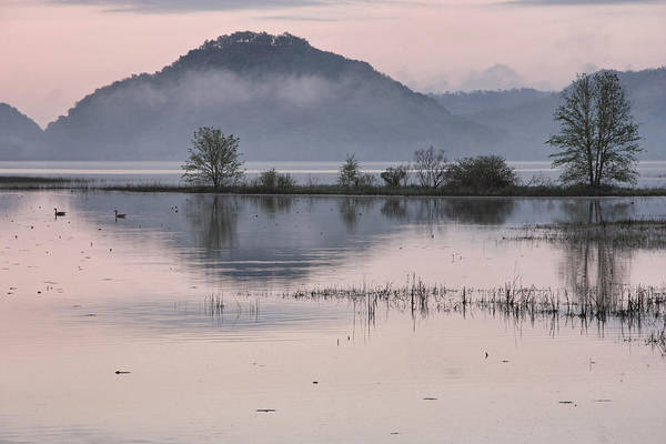 Photograph - The Misty Mississippi by Theo