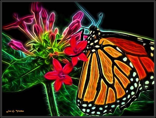 Painting - The Monarch by Jon Volden