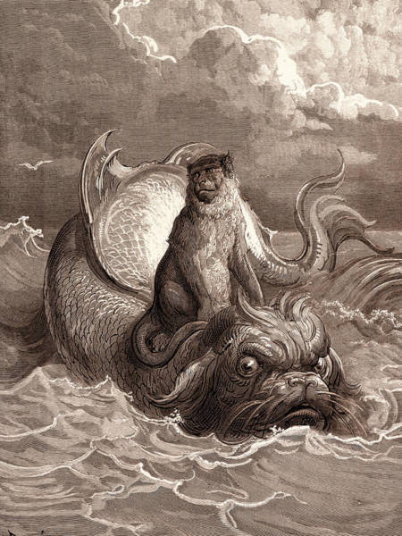 Dor Drawing - The Monkey And The Dolphin by Litz Collection