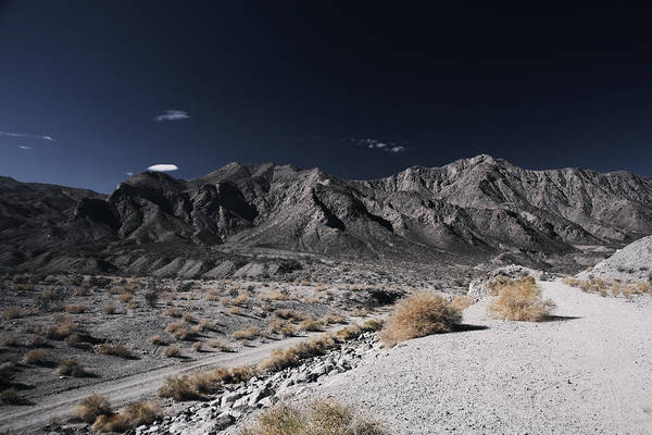 La Quinta Wall Art - Photograph - The Mood I'm In by Laurie Search