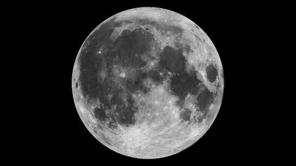 Photograph - The Moon by Celestial Images