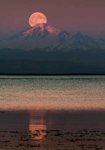 Photograph - The Moon Over Mount Baker by Alexis Birkill
