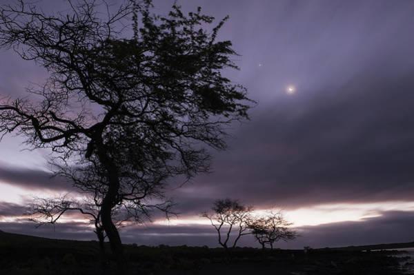 Wall Art - Photograph - The Moon Shines Through Clouds by Carl Johnson