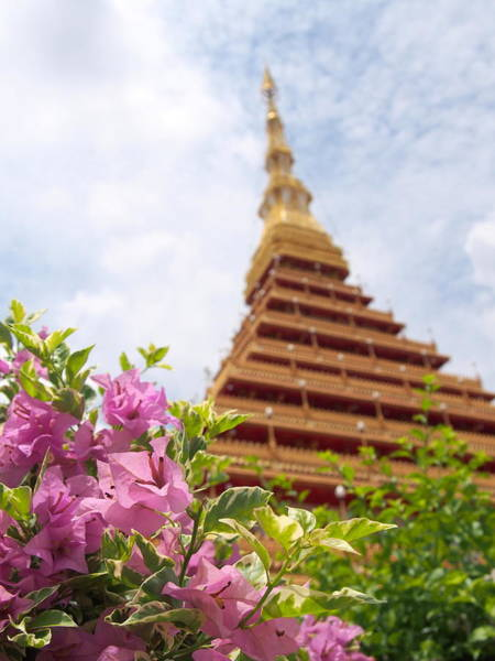Bougainvillea Photograph - The Most Beautiful Temple In Thailand by Takau99