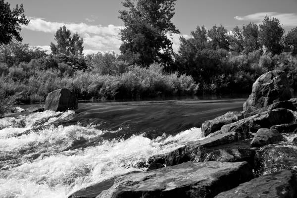Stream Mixed Media - The Mouth Of The River Bw by Angelina Tamez