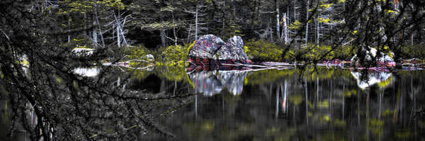Photograph - The Mystique Of Sis Lake by David Patterson