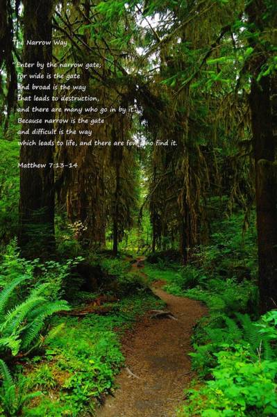 Bible Quotes Photograph - The Narrow Way by Jeff Swan