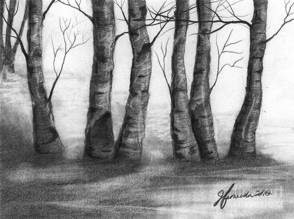 Wall Art - Drawing - The Nature Of Trees by J Ferwerda
