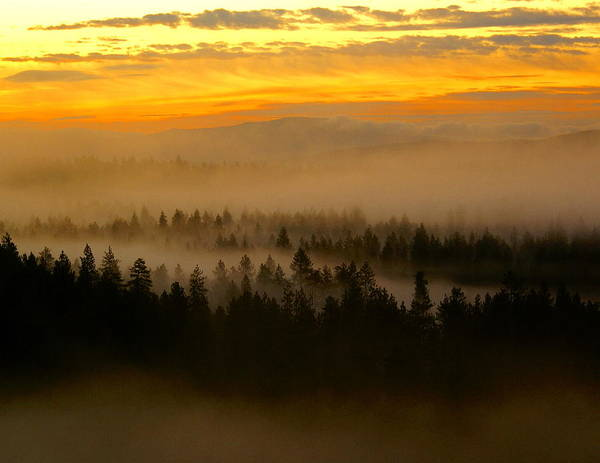 Photograph - The New Day by Ben Upham III