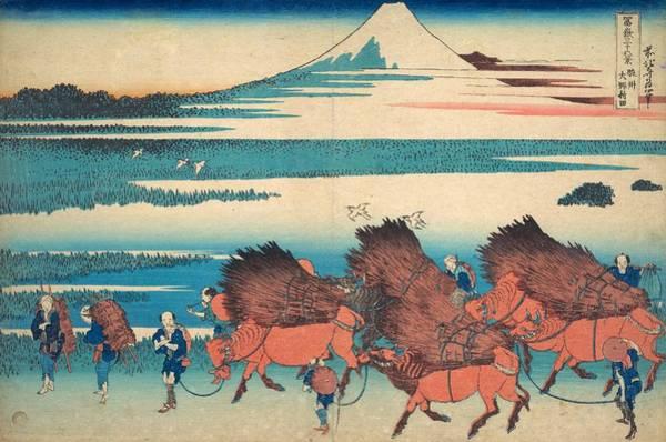 Thirty-six Views Of Mount Fuji Wall Art - Painting - The New Fields At Ono In Suruga Province by Katsushika Hokusai