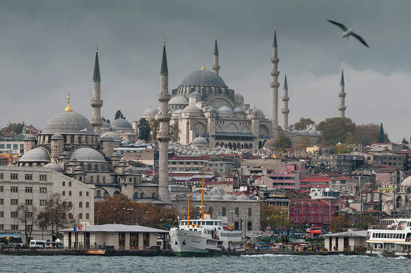 Suleymaniye Mosque Photograph - The New Mosque And The Suleymaniye by Ayhan Altun
