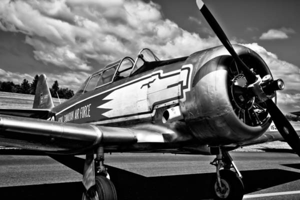 Photograph - The North American T-6 Texan by David Patterson