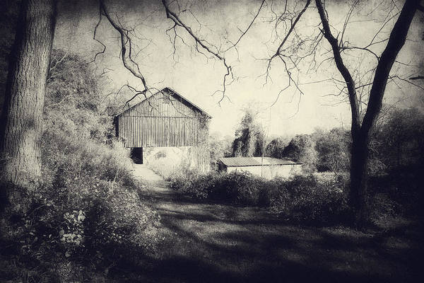 Photograph - The Old Barn In Vintage by Trina  Ansel