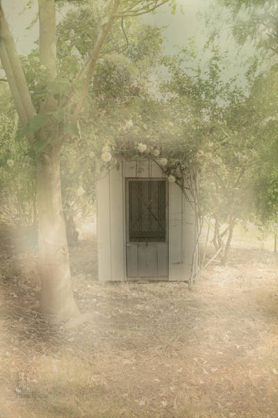 Photograph - The Old Chook Shed by Elaine Teague
