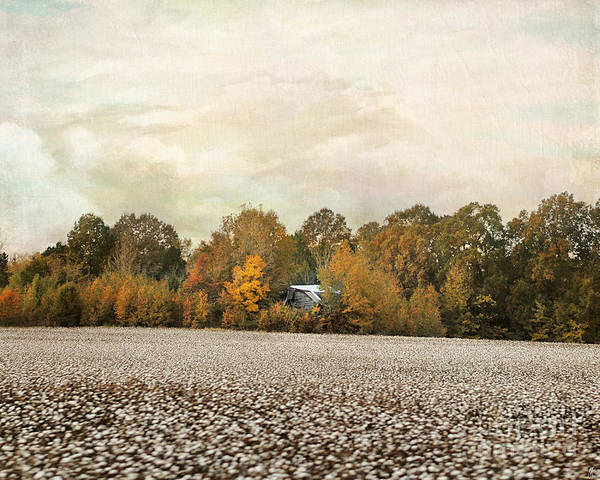 Photograph - The Old Cotton Barn Country Landscape by Jai Johnson
