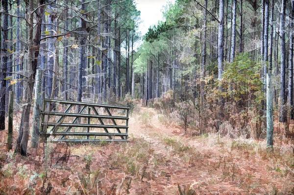 Wall Art - Photograph - The Old Deer Gate by Scott Hansen