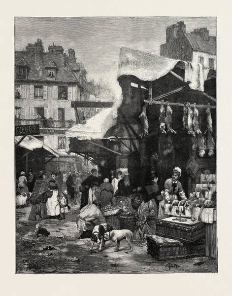 Old Style Drawing - The Old Game And Poultry Market In Paris by English School