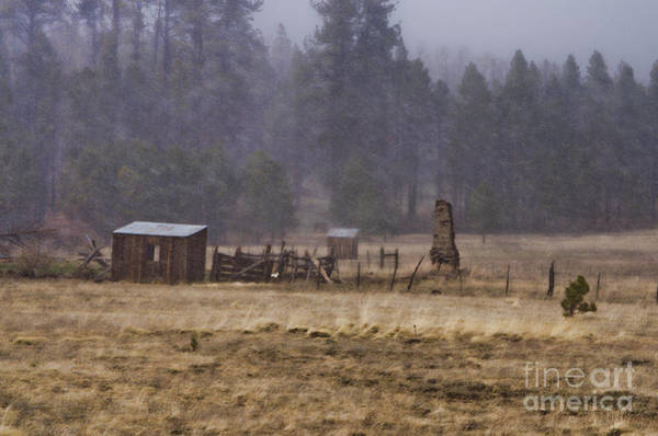 Photograph - The Old Homestead by Donna Greene