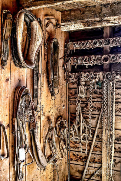 Photograph - The Old Tack Room by Olivier Le Queinec