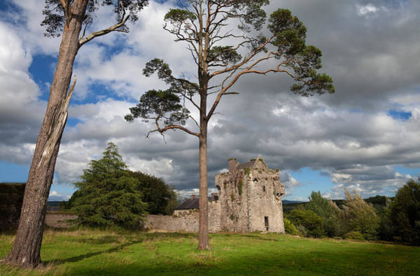 Jardin Photograph - The Old Tourin Castle, County by Panoramic Images