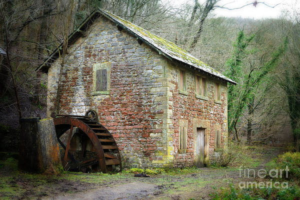 Photograph - The Old Watermill by David Birchall