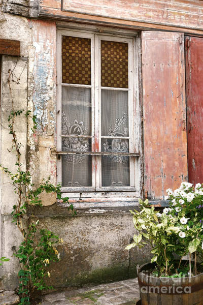 Wall Art - Photograph - The Old Window With The Cats On The Curtains by Olivier Le Queinec
