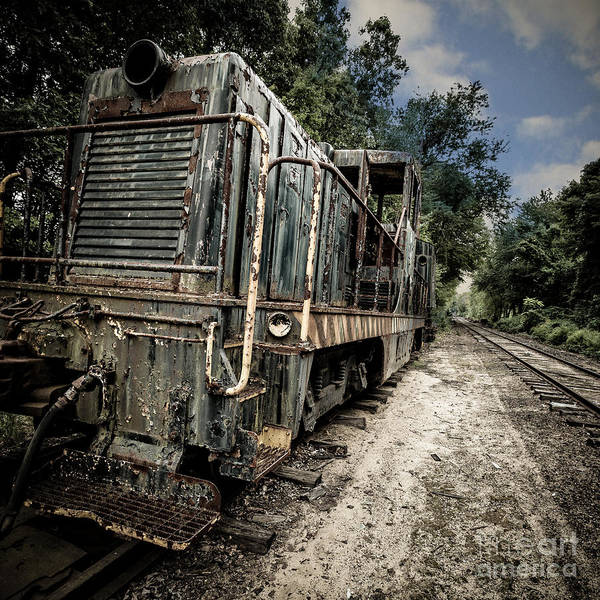 Relic Photograph - The Old Workhorse by Edward Fielding