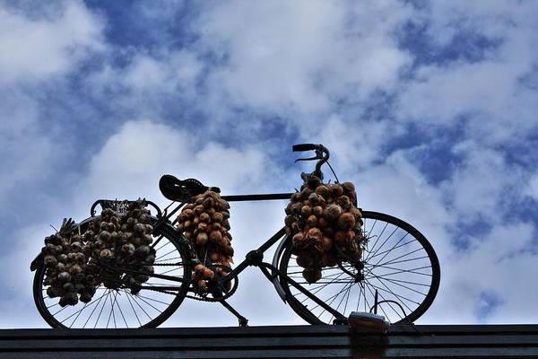 Photograph - The Onion Bicycle by Aidan Moran