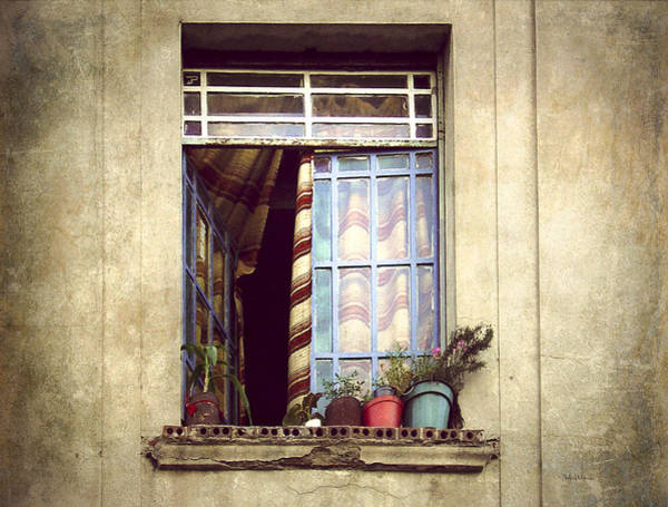 Montevideo Wall Art - Photograph - The Open Window by Julie Palencia