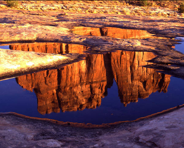 Photograph - The Organ Reflection by Ray Mathis