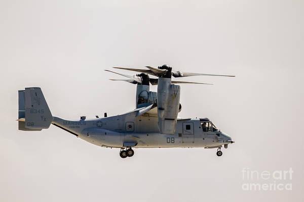 Mv-22 Photograph - The  Osprey by Robert Bales