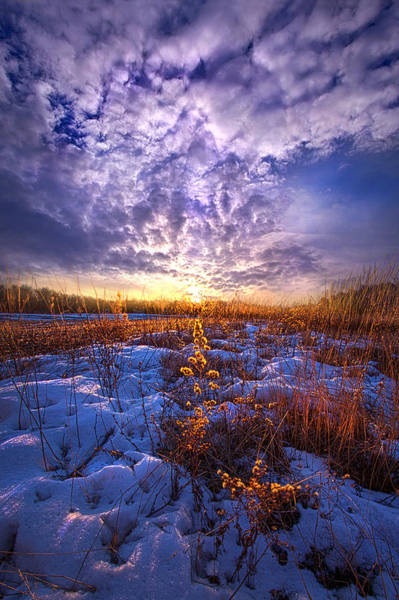 Photograph - The Other Side Of Waking by Phil Koch