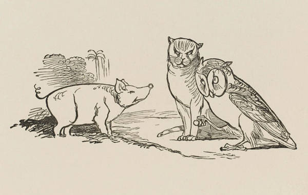 Pussycat Drawing - The Owl & The Pussy-cat  The Owl by Mary Evans Picture Library