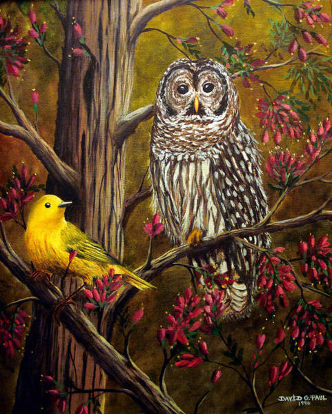 Canaries Painting - The Owl And The Canary by David G Paul