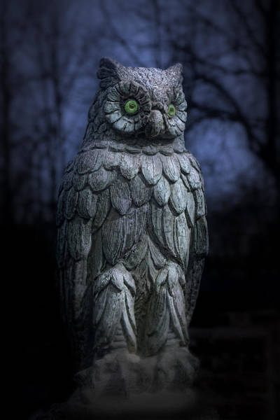 Statue Wall Art - Photograph - The Owl by Tom Mc Nemar