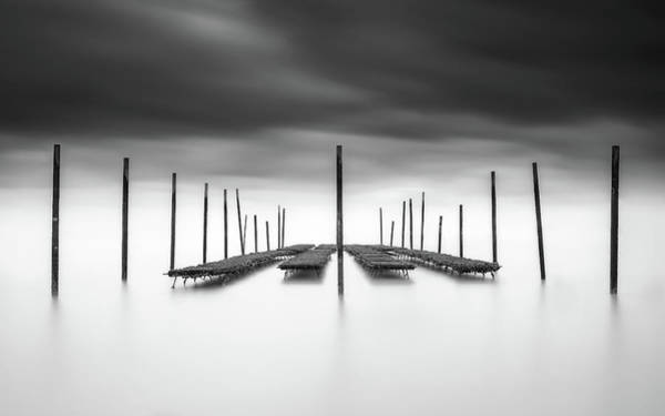 Black Cloud Photograph - The Oyster Bar by Christophe Staelens