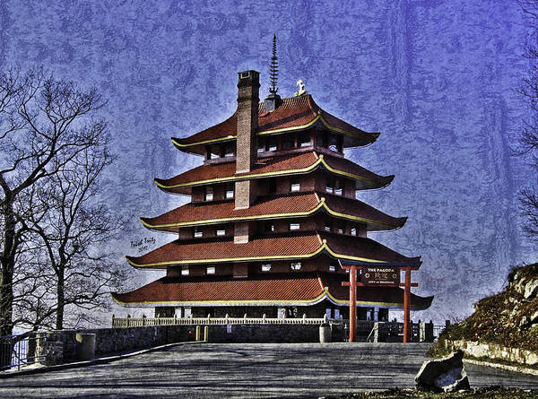 Photograph - The Pagoda by Trish Tritz