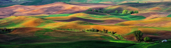 Farmhouse Photograph - The Palouse by Hua Zhu